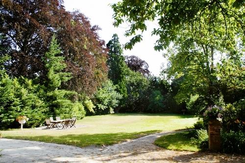 Bruine beuk, wierookcipres en goudbonte Ierse taxus in het park bij de villa Persoons