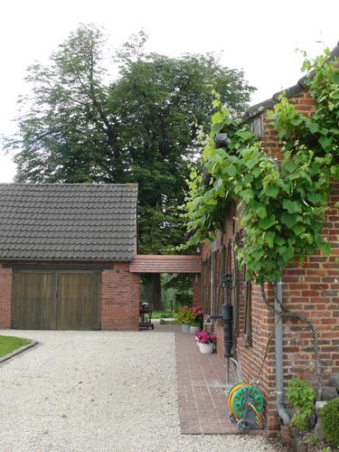 Driestenbroekestraat 20 Opbrakel paardenkastanje als hoekboom (1) (Custom)