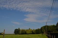 Park van het kasteel Brandepoel