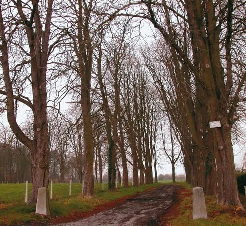 Dreef en oprit gemarkeerd door twee arduinen kettingpalen naar het kasteel van Pietelbeek.
