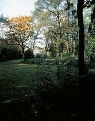 Gemeentelijk park