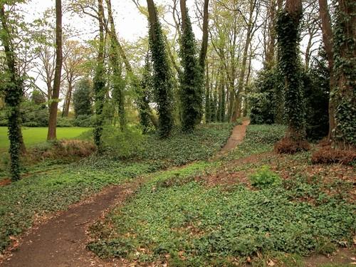 Het park van het kasteel Quanonne te Beringen