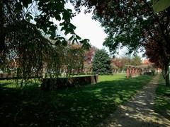 Groenaanleg in de tuinwijk Vlakveld