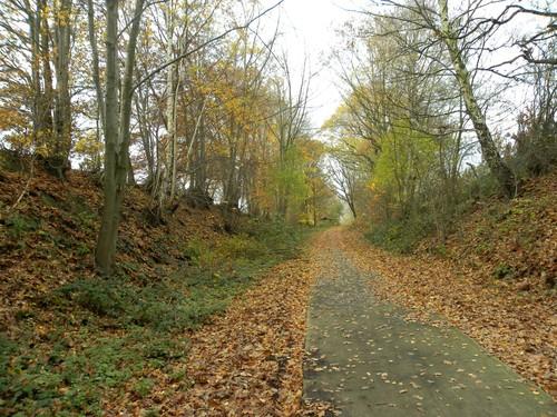 Engelbamp holle weg kruising Heide