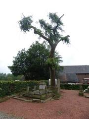 Treures op begraafplaats