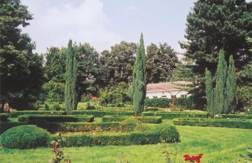 De rozentuin in het park van het rusthuis Maria Assumpta te Dilbeek