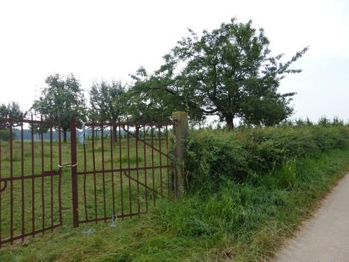 Borgloon, Bommershoven, afsluitingshaag rond boomgaard