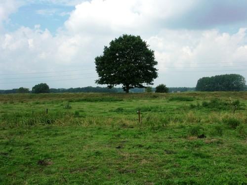 Zennegat-Battenbroek: Dijk tussen de Zennevallei en Heindonk/Hooiendonk