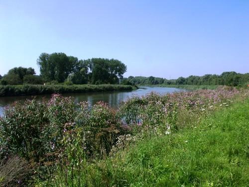 Zennegat-Battenbroek: Zicht op de Dijle