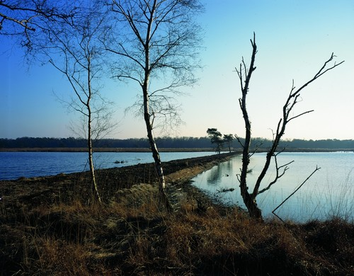 Mol: De Ronde Put (middendijk)