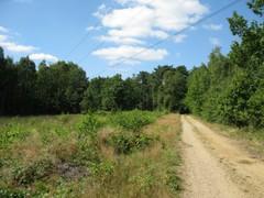 Voormalige Schootsheide tussen Elen en Opoeteren en de Bosbeekvallei