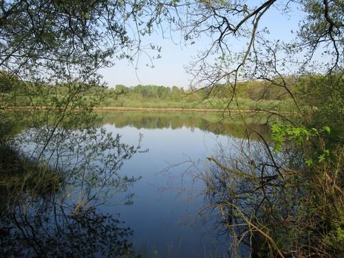 Steilrand van het Kempisch Plateau van de Kikbeek tot de Asbeek