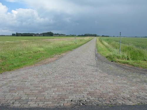 De Casteleynstraat in Jeronimus-Nieuwlandpolder