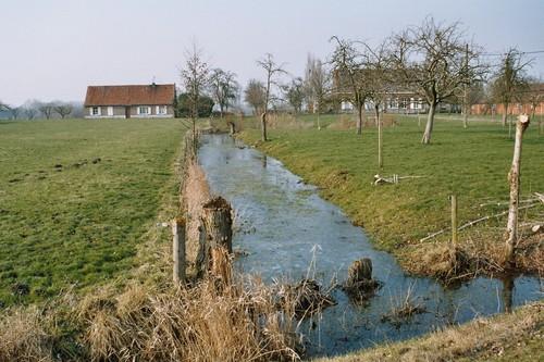 Gent Drongen Slindonkdries grachten op begraasde voorerven