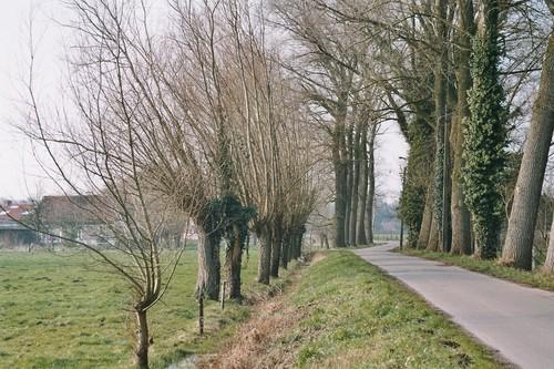 Nevele Landegem Broekstraat Heystedries