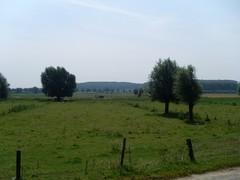 Scheldemeersen tussen Bevere, Petegem en Melden en de kouter van Petegem