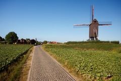 Schelde-Leie interfluvium tussen Waregem, Kruishoutem en Oudenaarde