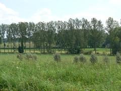 Zwalmvallei tussen Nederbrakel en Nederzwalm