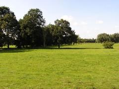 Dijlevallei tussen Mechelen en Rijmenam