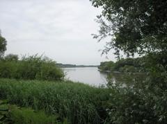 Vlassenbroekse polder en polder van Kastel, Mariekerke en Sint-Amands