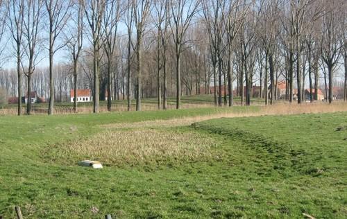 Damme, grasland met typisch microreliëf en bomenrijen gekoppeld aan de stadswallen van Damme