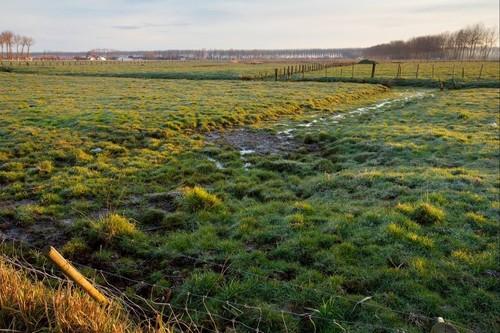 Brugge (Koolkerke), open polderlandschap tussen Koolkerke en Damme