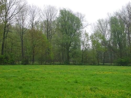 Aalst (Merchtem), Faluintjes met vallei van de Geerbeek