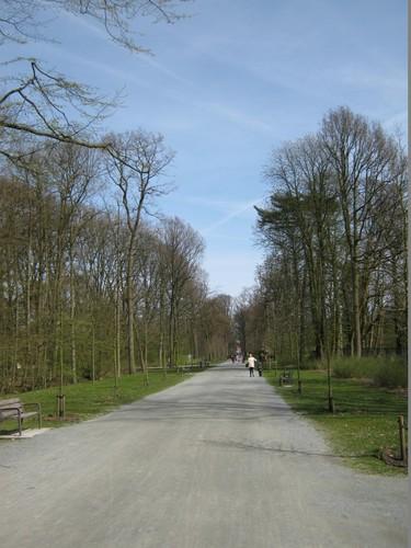 Centrale as Middelheimpark