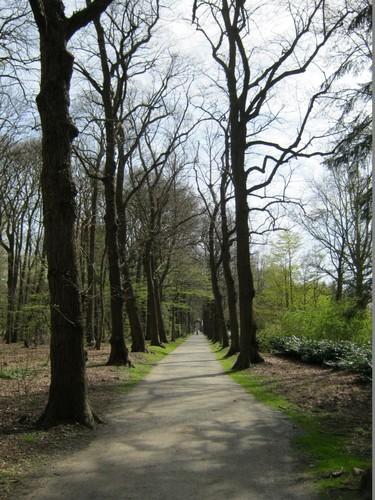 Dreef Middelheimpark