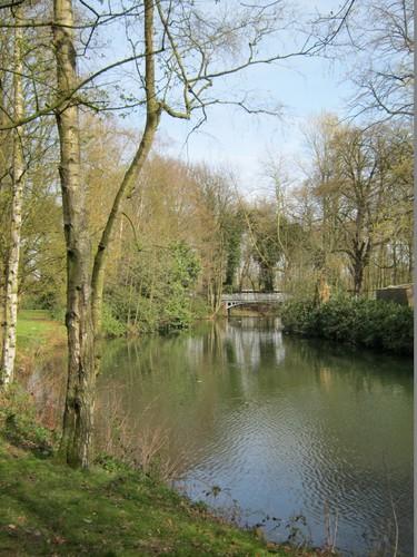 Vijvers Middelheimpark