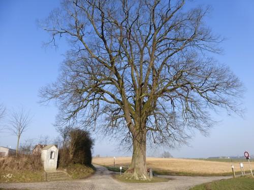 Tervuren Huldenbergstraat zonder nummer kapel
