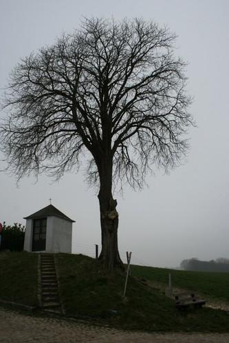 Tervuren Varenberg zonder nummer kapel