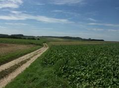 Plateau van Duisburg