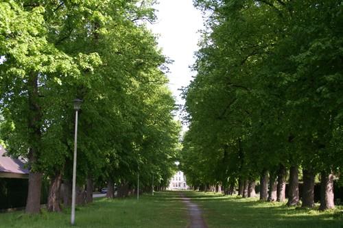 Gent Sint-Denijs-Westrem lindedreef kasteeldomein Borluut