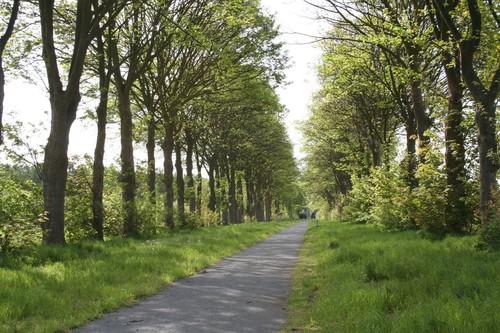 Gent Sint-Denijs-Westrem Kortrijksesteenweg esdoorndreef Grand Noble