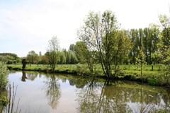 Scheldemeersen tussen Zevergem en Schelderode