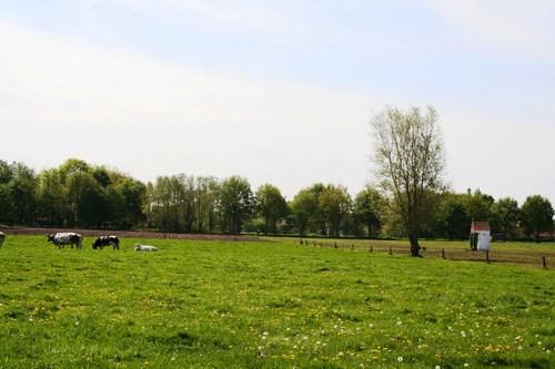 De Pinte weilanden tussen Beukendreef en Snijafdreef met kapel van Onze-Lieve-Vrouw van Hemelrijk