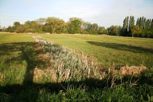 Deinze Zeveren Aaltersesteenweg de Blekerij in de Zeverenbeekvallei