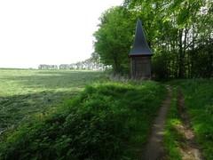 Wijnendalebos en kasteeldomein van Wijnendale