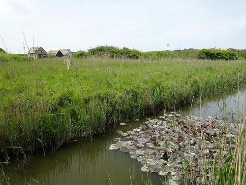 archeologische site met evocatie van het middeleeuwse vissersdorp Walraversijde