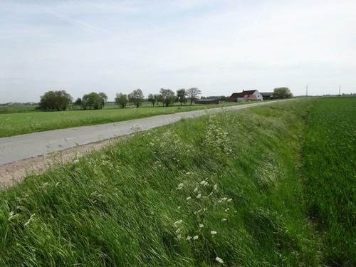 tracé van de voormalige Steense dijk ter hoogte van de huidige Schorredijkstraat