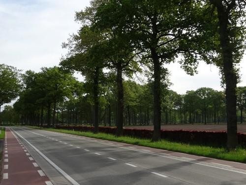 steenweg Brugge-Kortrijk met wegbeplanting van opgaande eiken