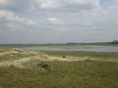 Het Zwin met Hazegraspolders, Koningsbos, Willem-Leopoldpolder, Oud Fort Isabella en Cantelmolinie