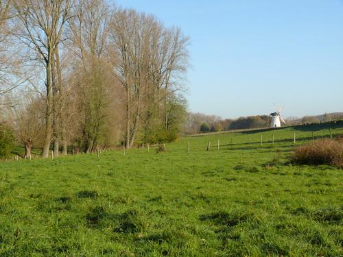 Brakel Opbrakel Kameidries vallei van de Dorenbosbeek en Verrebeekmolen