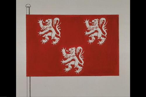 Gavere Vlag