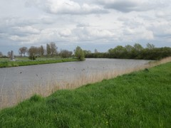 IJzervallei tussen Diksmuide en Stuivekenskerke