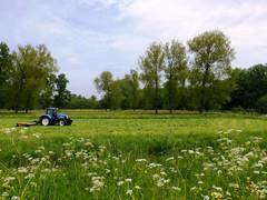 Dendervallei tussen Idegem en Ninove en het Geitebos