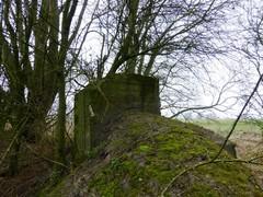 Damme Lapscheure Damse Vaart Noord znr bunker300970 3 (https://id.erfgoed.net/afbeeldingen/225506)