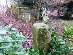 Maldegem Dijkstraat bunker301009 1 (https://id.erfgoed.net/afbeeldingen/225631)