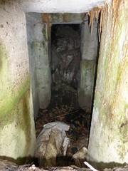 Maldegem Dijkstraat bunker301009 2 (https://id.erfgoed.net/afbeeldingen/225632)